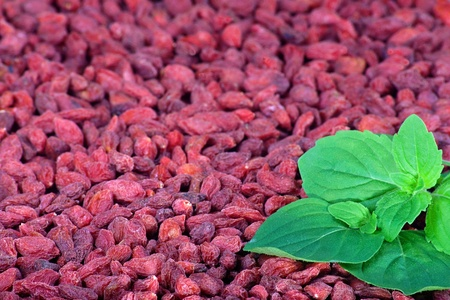 Red goji berries with green mint leaves photo