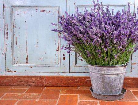 herbs of provence: Bouquet of lavender in a rustic decorative setting