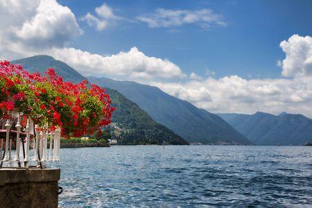 geranium: Red flowers by Lake Como Italy