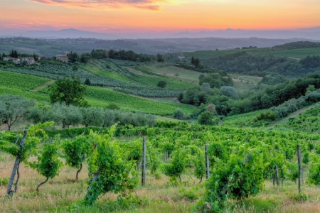 toscana: Sunset landscape in Tuscany