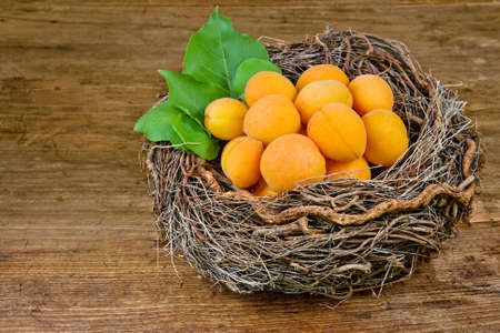 Apricots in a basket on a wooden background photo