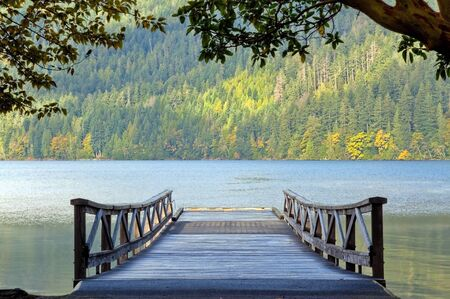 old pier: Wooden pier and autumn foliage at Lake Crescent Washington