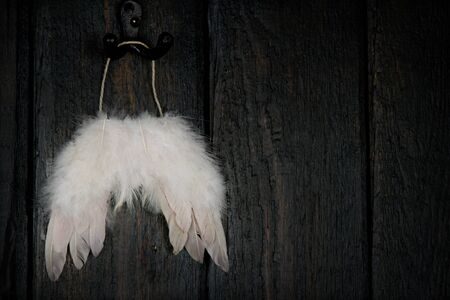feathered: Feathered angel wings on dark wooden rustic background