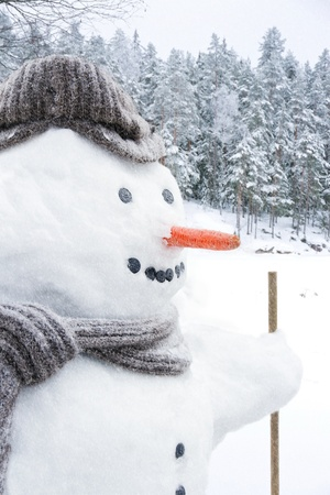 Closeup of smiling snowman with woolen hat, scarf and carrot nose, outdoors in snowfall Stock Photo