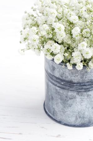 babys: Bouquet of white gypsophila, babys breath flowers, on wooden background