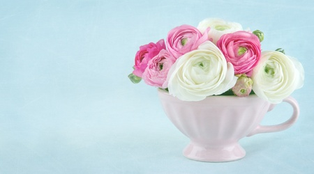 Ranunculus flowers in a pink cup on light blue textured background, with copy space photo