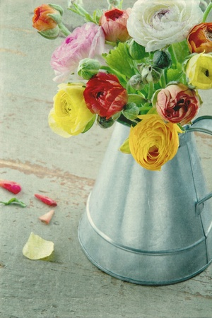 Bouquet of colorful ranunculus on green textured background Stock Photo - 18837565