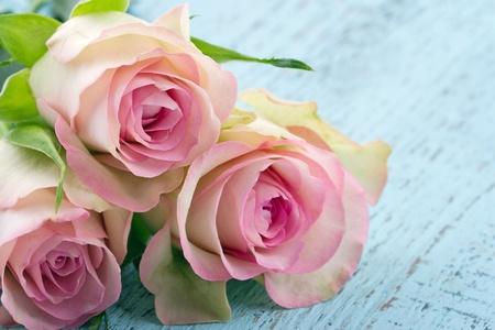 Romantisch rosa Rosen auf hellblauem Holz shabby chic Hintergrund Standard-Bild - 18837433