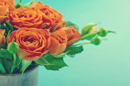 love rose: Bouquet of orange roses in a vase on vintage shabby chic background