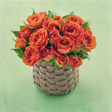 orange rose: Bouquet of orange roses on textured background with copy space