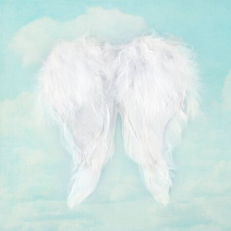 holy angel: White angel wings on textured blue sky background