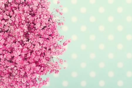 청록색 분홍색 아기의 꽃의 꽃다발 빈티지 편집과 배경 점선