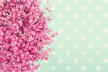 Bouquet of pink babys flowers on turquoise dotted background with vintage editing
