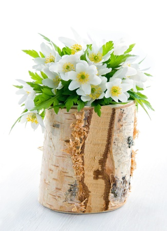 Bouquet Of White Spring Flowers Wood Anemones In A Rustic Wooden