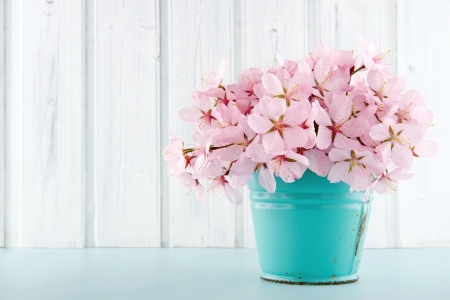 Pink cherry blossom flower bouquet on light blue vintage and white wooden background