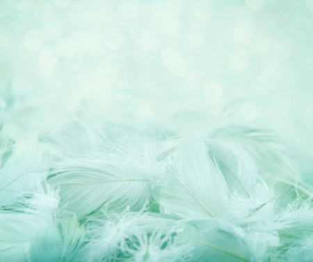 Soft fluffy feathers on turquoise blue blurry background and bokeh, day dreaming concept