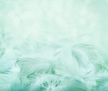 Weichen, flauschigen Federn auf türkisblauem Hintergrund verschwommen und Bokeh, Tag träumen Konzept Standard-Bild - 19979124