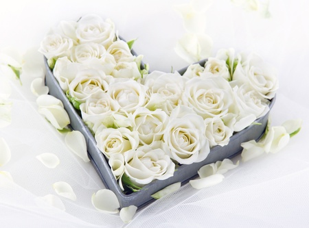 White wedding roses in an old vintage metal heart shaped tray on dreamy lace background with floral petals Stockfoto
