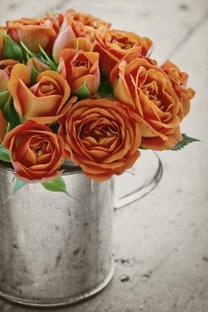 rosas naranjas: Vintage ramo de rosas de color naranja sobre fondo de textura r�stica en blanco y negro
