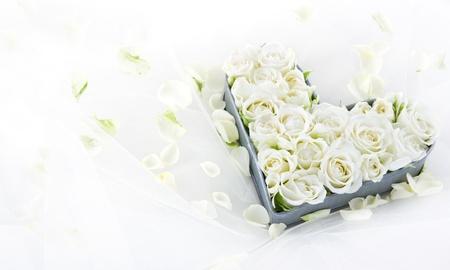 anniversario di matrimonio: Rose da sposa bianco in una vecchia annata di metallo a forma di cuore piatto su sfondo pizzo sognante con petali floreali