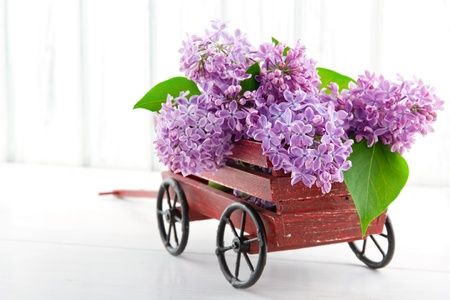 Purple lilac flower bouquet in a decorative wooden carriage on white vintage background photo