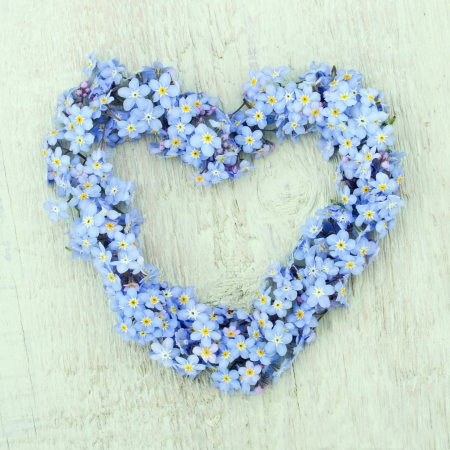 forget me not: Heart shaped flower wreath of forget-me-not on green wooden background