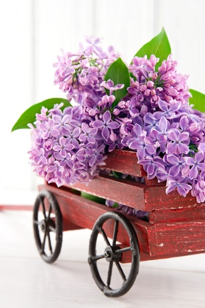 Purple lilac flower bouquet in a decorative wooden carriage on white vintage background