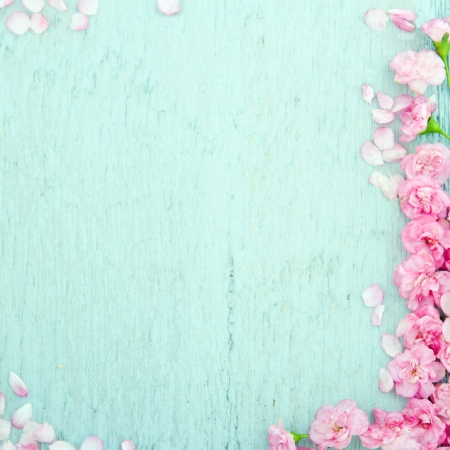 gift background: Blue wooden background with pink spring blossom flowers and copy space Stock Photo