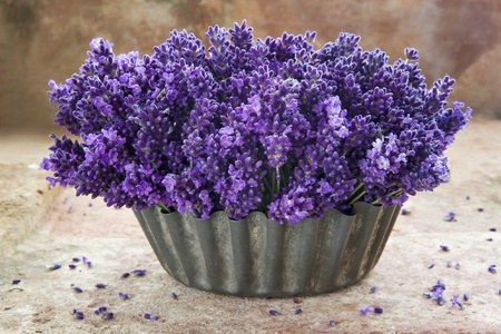 Fresh bouquet of lavender flowers in a metal vase on rustic terracotta background photo