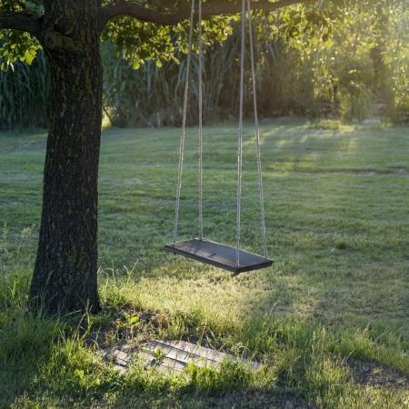 황금 저녁 햇빛에 녹색 잔디 배경에 큰 나무에 매달려 오래 된 목조 빈티지 정원 스윙, 스톡 콘텐츠