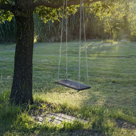 Old wooden vintage garden swing hanging from a large tree on green grass background, in golden evening sunlight Stockfoto