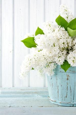 primavera: Ramo de lilas blancas flores de primavera en un florero azul de madera en la luz de fondo shabby chic