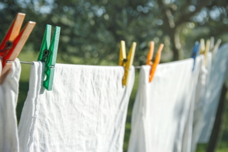 Closeup of white clean t-shirts and other laundry drying on a clothesline hanging from an olive tree in a green summer garden in Italy Tuscany