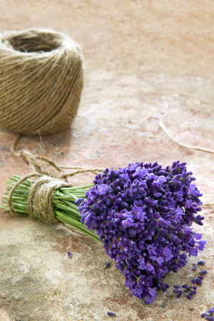 twine: Bouquet of fresh purple lavender flowers tied with rustic twine on brown terracotta background