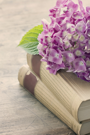 Old books with romantic pink flowers on wooden background, vintage editing photo