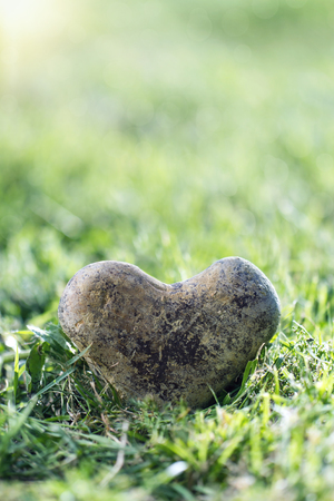 heart of stone: Heart shaped stone in green grass with golden sunlight and copy space