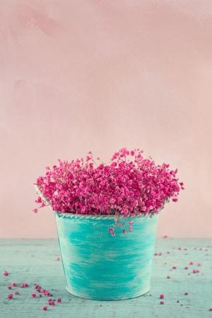 babys: Pink dried babys breath flowers in a blue vase on wooden vintage background