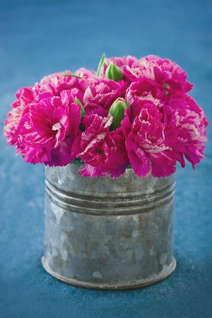 flores fucsia: Flores de clavel de color fucsia en una lata de metal sobre fondo azul demin