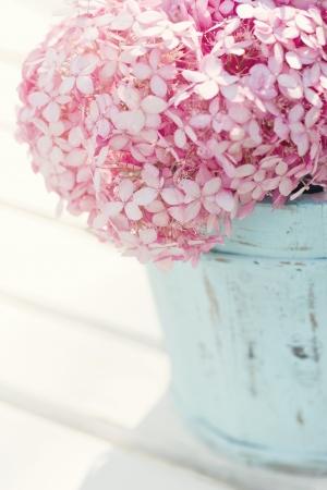 밝은 파란색 오래 된 나무 빈티지 꽃병에 핑크 수국 꽃