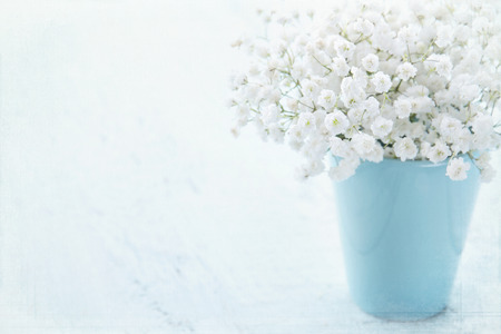 babys: White babys breath flowers in a vase on light blue textured vintage background
