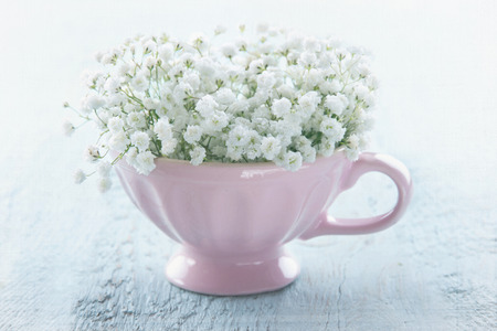 White babys breath flowers in a pink cup on light blue wooden vintage background