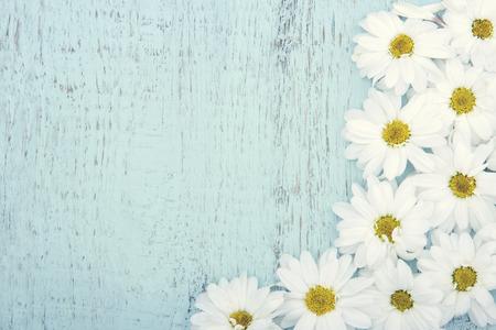 복사 공간과 흰색 데이지 빛 푸른 나무 빈티지 배경 스톡 콘텐츠