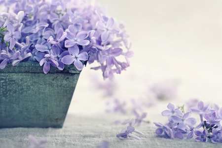 flower bunch: Metal vase with a bouquet of purple lilac spring flowers on vintage textured background Stock Photo