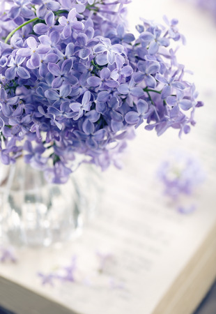 Bouquet of purple lilac spring flowers with an open book and vintage hazy editing Stock Photo