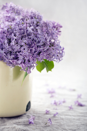 purple lilac: Vase with a bouquet of purple lilac spring flowers on vintage textured background