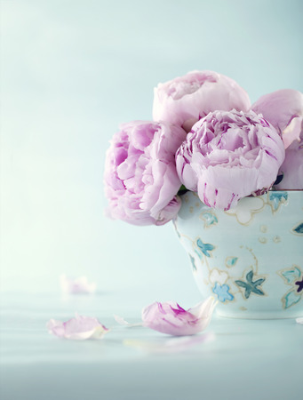 Pink peony flowers in a decorative cup on light blue vintage background with hazy vintage editing Zdjęcie Seryjne