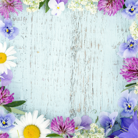 Zomer wilde bloemen met licht blauwe houten achtergrond