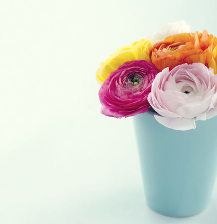 Bouquet of colorful ranunculus flowers