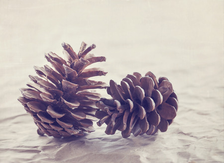 Pine cones for Christmas on brown rustic background and vintage hazy vintage editing