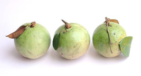 Three ripe star apples with leaves
